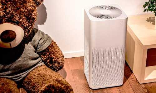 Как выбрать увлажнитель воздуха и очиститель воздуха
