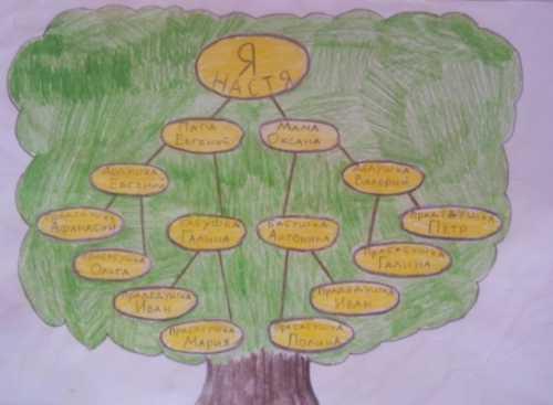 Как нарисовать семейное дерево ребенку в школу