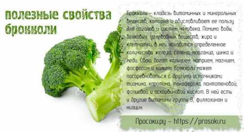 Польза свежей капусты, возможный вред, кому